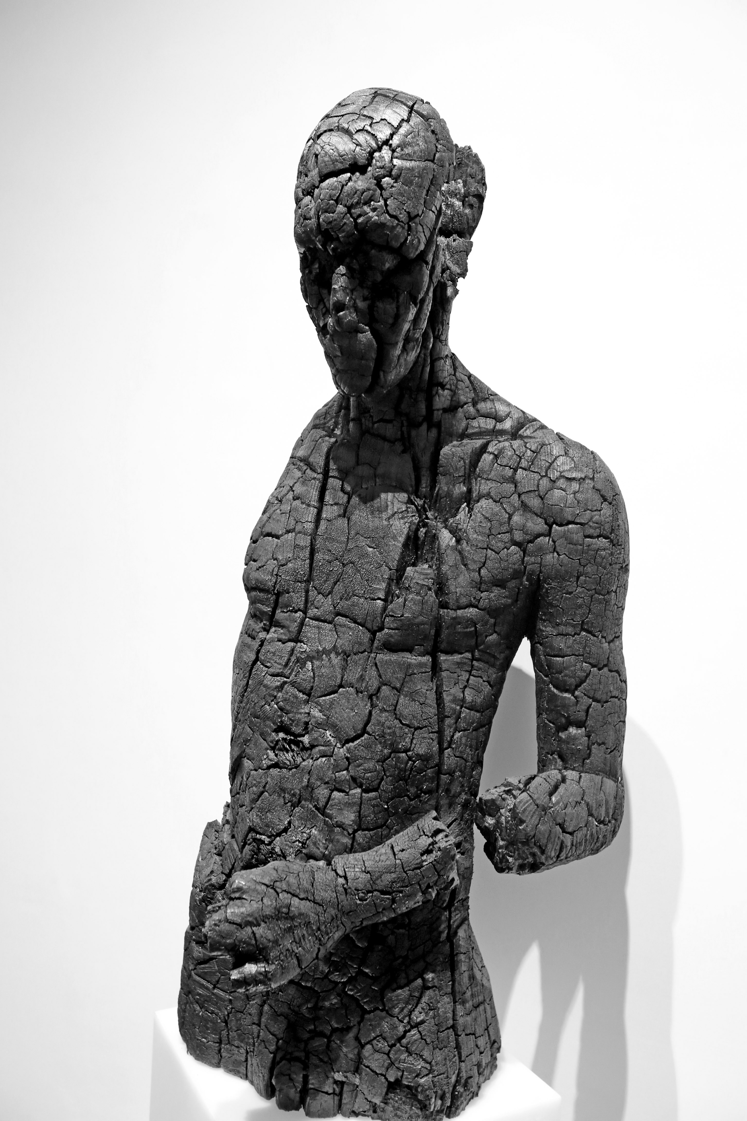 Dies Cenerum, 2014, carbonized wood, 90x43x40