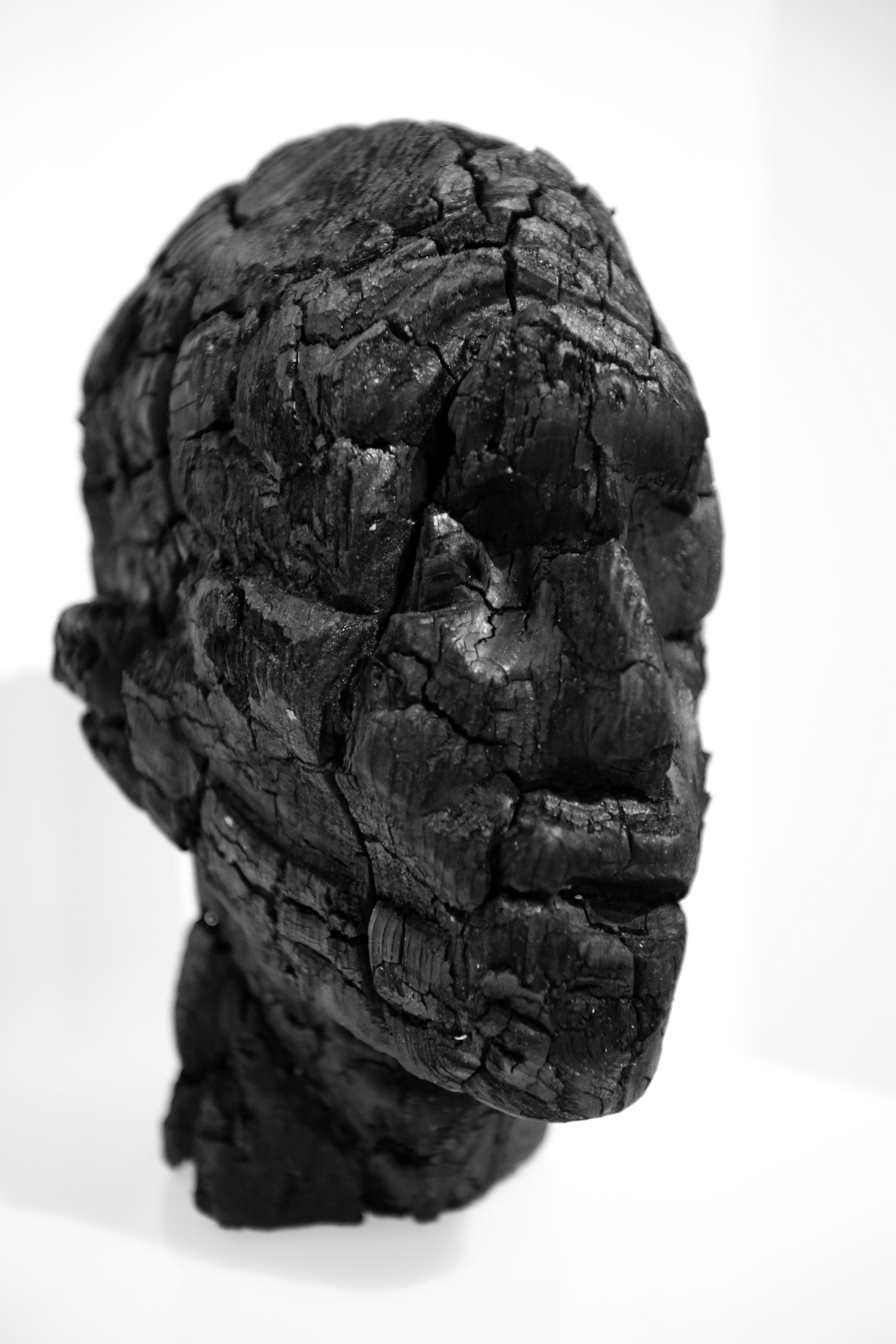 Strutturazione, 2015, particolare, legno carbonizzato,  29x17x23 cm